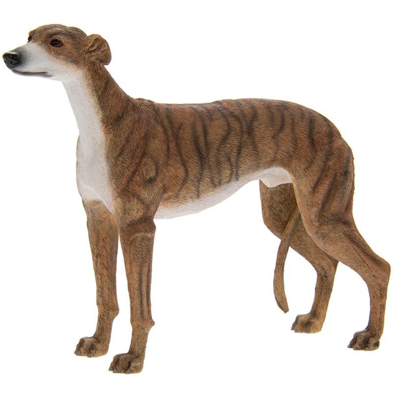 Greyhound Brindle Lesser Amp Pavey