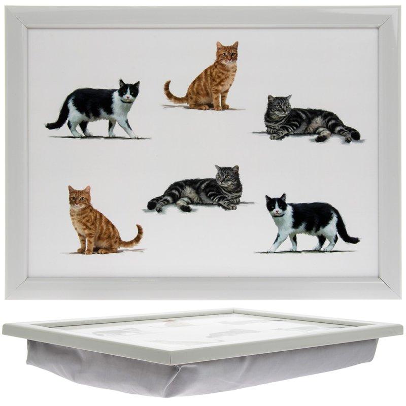 CATS LAPTRAY