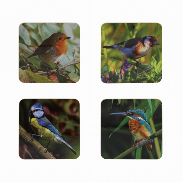 BIRDS COASTERS S4