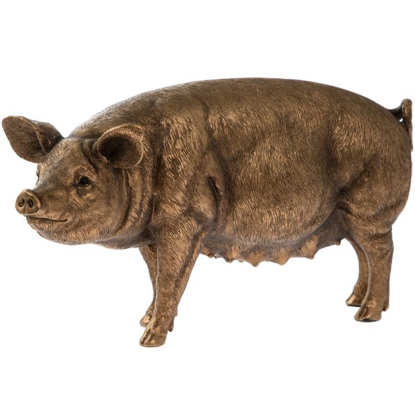 REFLECTIONS BRONZED PIG