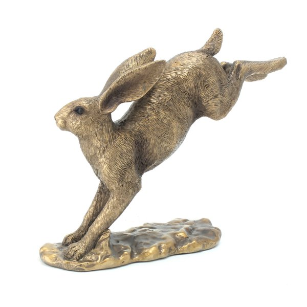 REFLECTIONS HARE