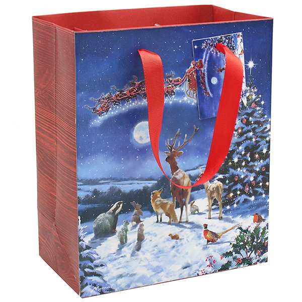 MAGIC OF XMAS GIFT BAG MED