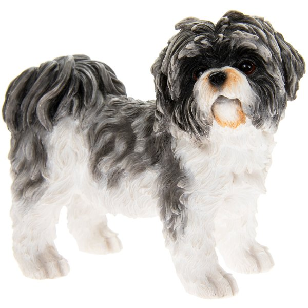 SHIHTZU BLACK & WHITE