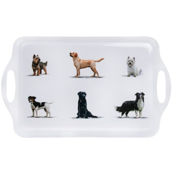 DOGS TRAY LARGE