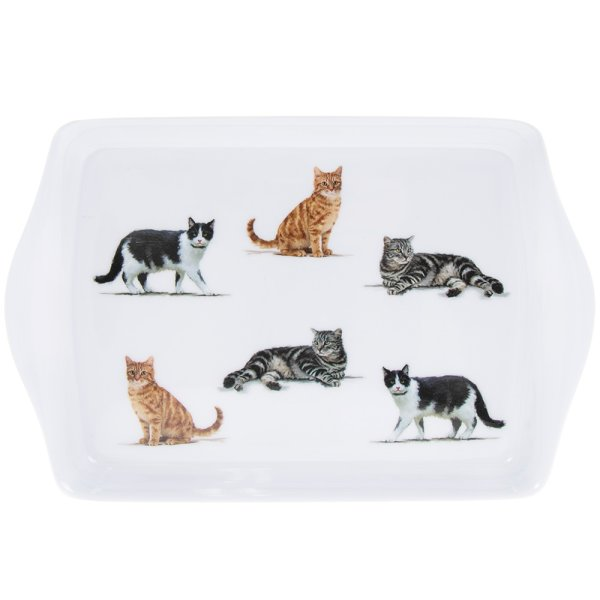 CATS TRAY SMALL