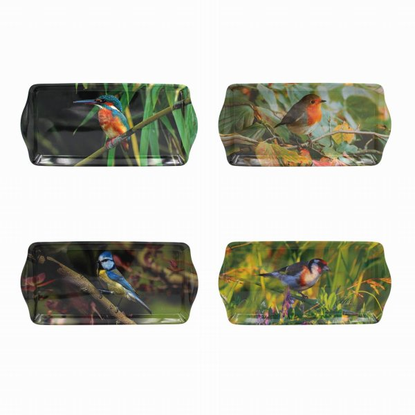 BIRDS TRAY MEDIUM 4 ASST