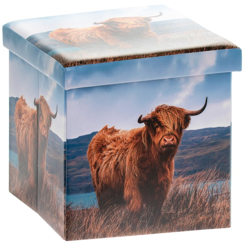 HIGHLAND COW FOLDING BOX