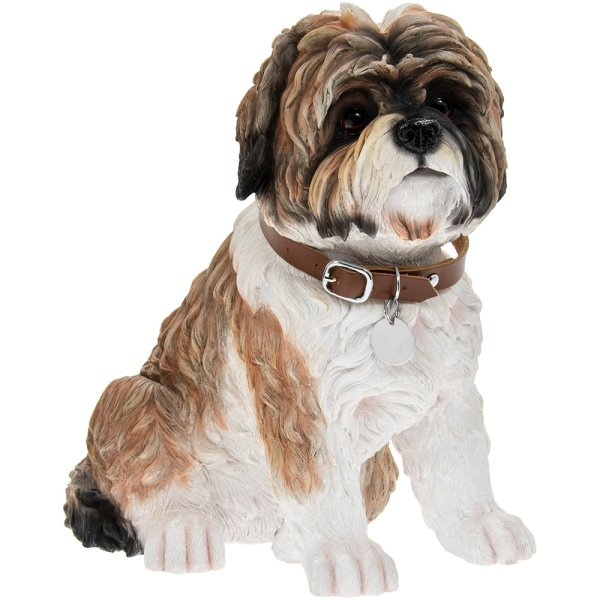 SHIH TZU BROWN SITTING