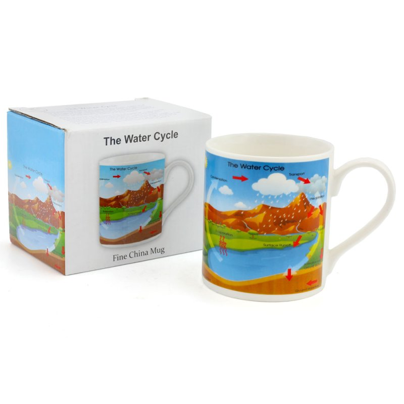 EDUCATIONAL WATER CYCLE MUG