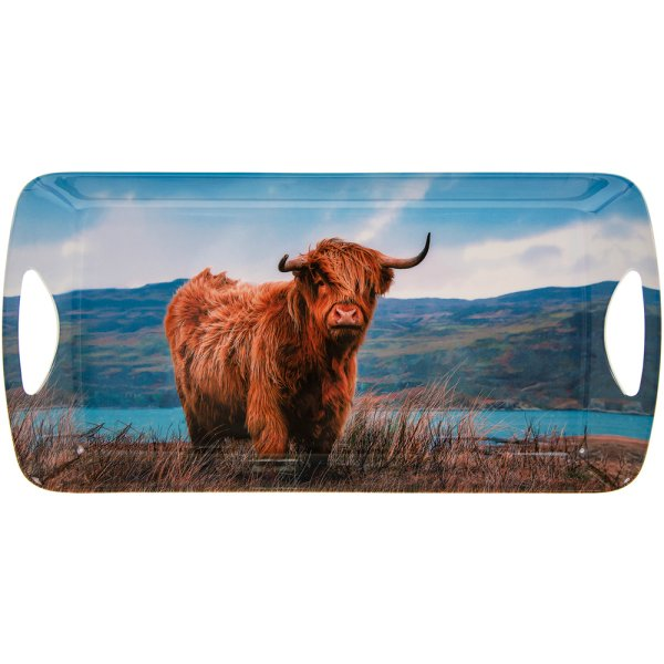 HIGHLAND COW TRAY MED