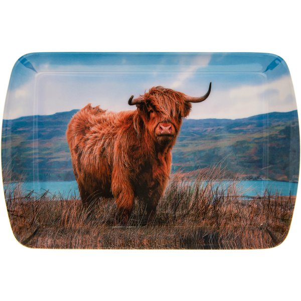HIGHLAND COW TRAY SML