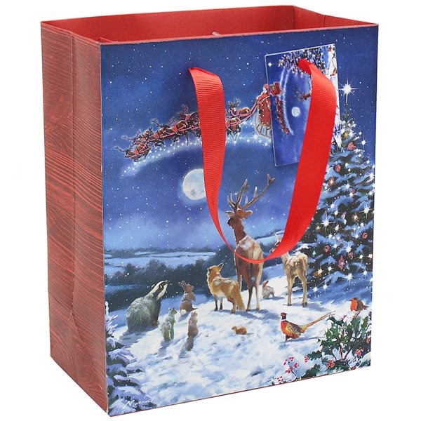 MAGIC OF XMAS GIFT BAG LGE