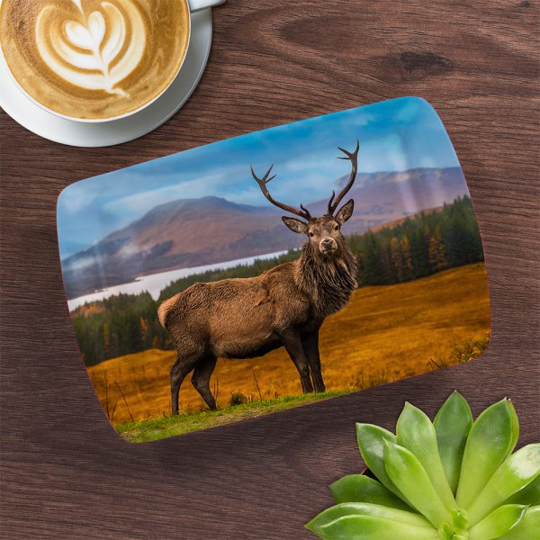 STAG TRAY SMALL