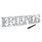 FRIENDS LED LIGHT