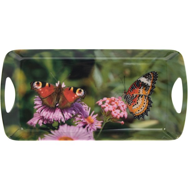 BUTTERFLY TRAY MEDIUM