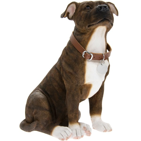 BRINDLE STAFFIE SITTING