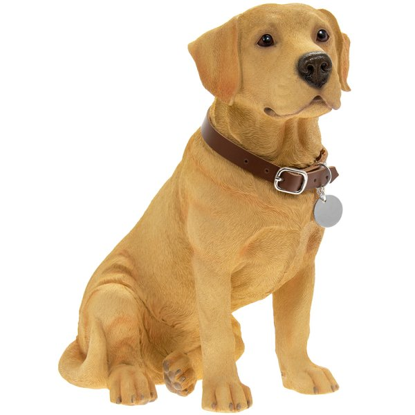 GOLDEN LABRADOR SITTING