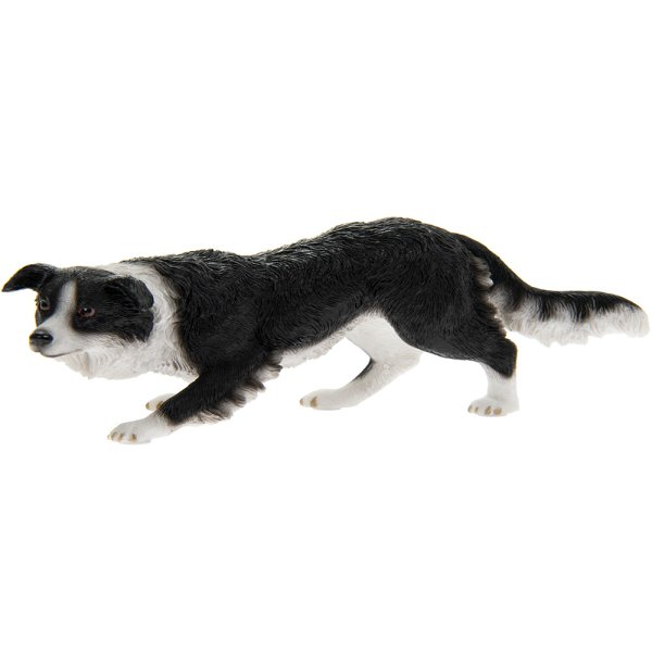 BORDER COLLIE BLACK & WHITE
