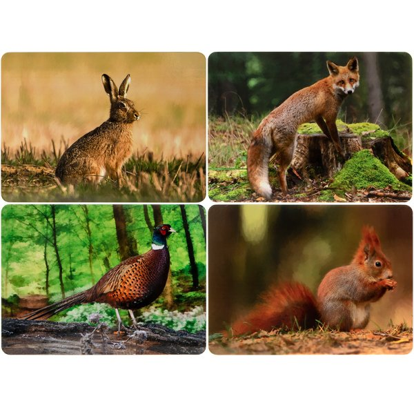 WILDLIFE PLACEMATS 4 ASST