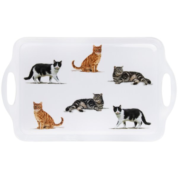 CATS TRAY LARGE