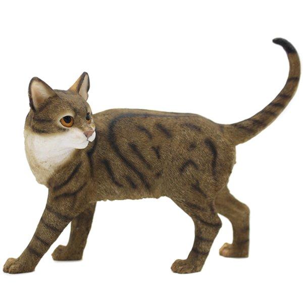 CAT STANDING TABBY