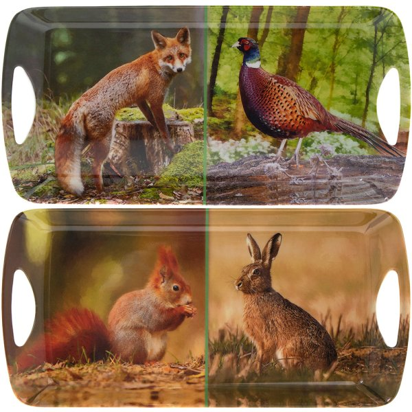 WILDLIFE TRAY MEDIUM 2 ASST