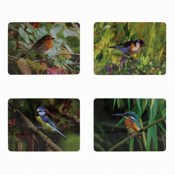 BIRDS PLACEMATS S4