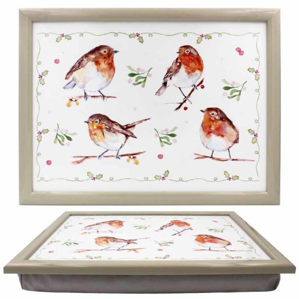 WINTER ROBINS LAPTRAY