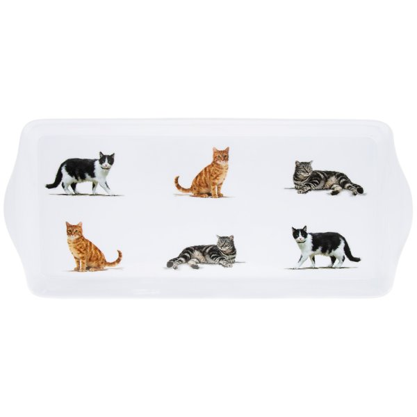 CATS TRAY MEDIUM