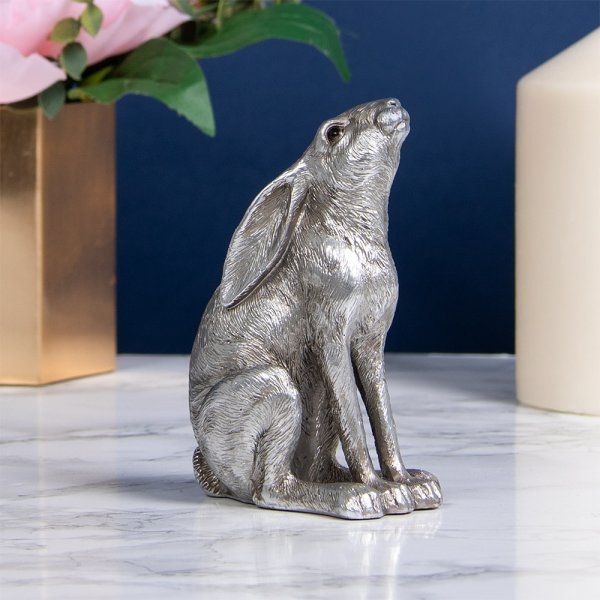 SILVER HARE GAZING