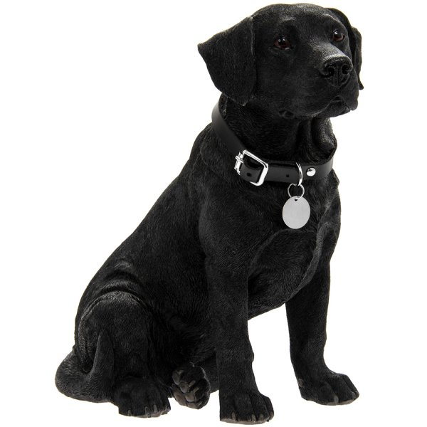 BLACK LABRADOR SITTING