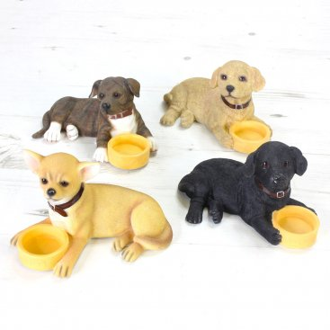 DOGS WITH BOWLS